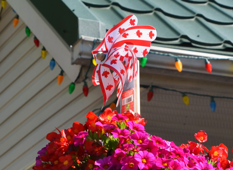 canada flag design on plastic windmill in a planter in a backyard