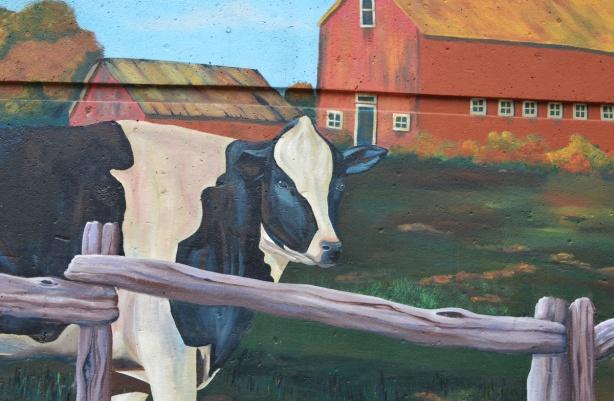 part of a mural, a black and white cow in a farmyard, behind a cedar rail fence, in front of an orange barn