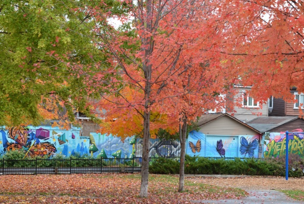 trees in autumn colours, with butterfly murals on the garages beyond the park