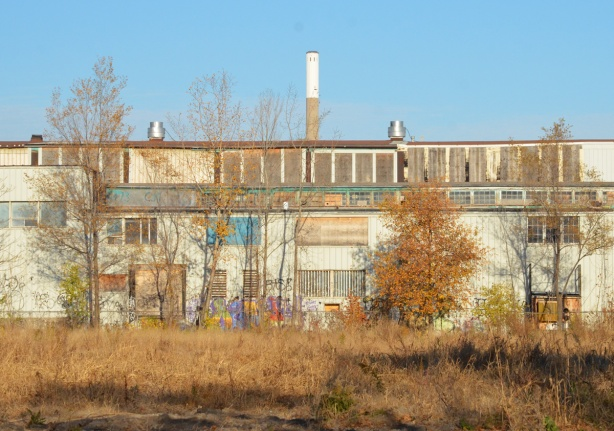 back of an empty building, vacant lot behind, graffiti on walls