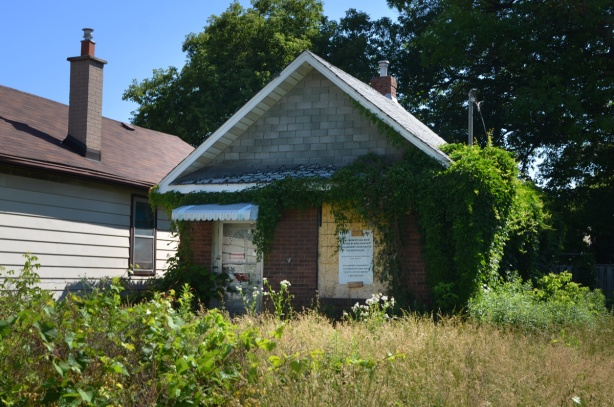 very small house with large front yard, yard is overgrown with long grass and weeds, boarded up with signs in the window