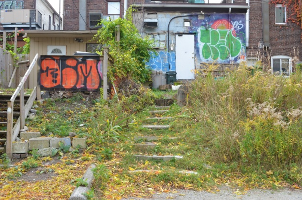 the back of two adjacent buildings on Bloor West, one has a set of stone steps leading down that are overgrown with grass and weeds, some graffiti on the back of the buildings