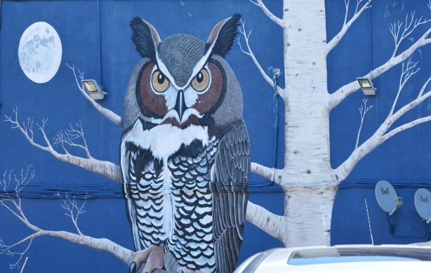 an owl and white tree on blue background, mural