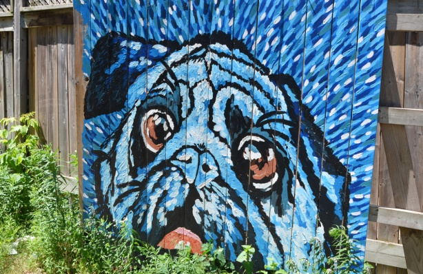 mural in mostly blue of a pug's face, dog with red tongue and brownish eyes, on wood