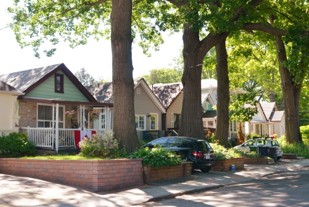 street scene - all the houses are small bungalows, large trees in the front yards, cars parked in driveways