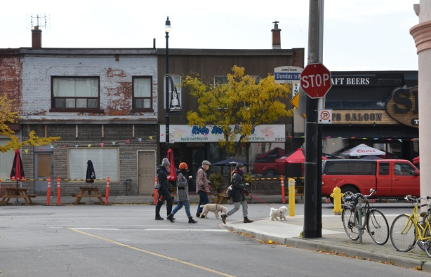 people and dogs walking along Dundas near Keele