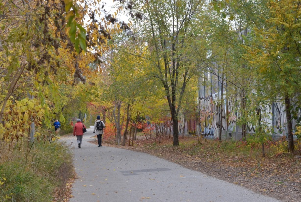 two people walking on an asphalt path past some small trees in autumn colours