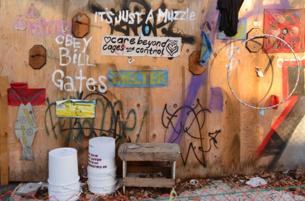 plywood fence with graffit on it, words, obey bill gates. Also words that say it's just a muzzle, obey