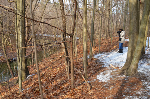 a woman taking pictures in the woods, winter