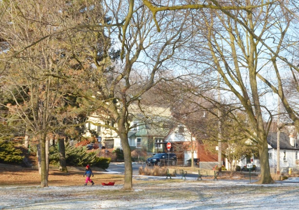 child in red pants and blue winter coat pulling a sled across a park, houses and trees behind it