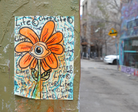 orange daisy with an eye in the center and the word life written many times around it