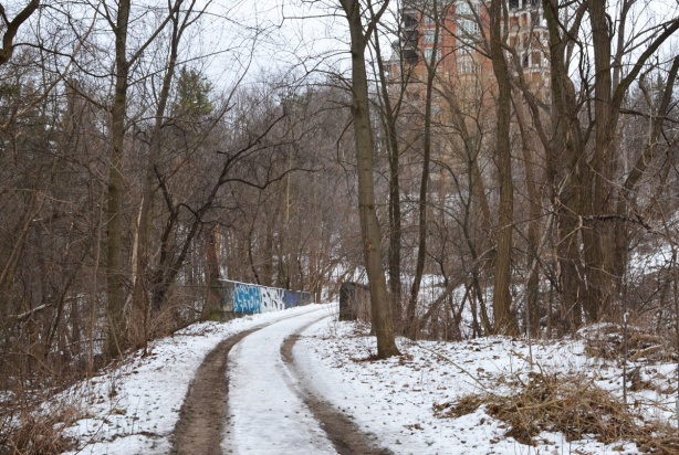 single lane unpaved road through woods, and then over old bridge, winter
