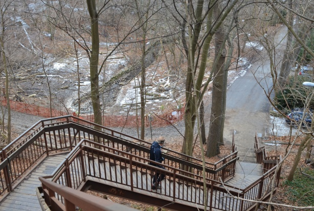 a man is going down a long set of stairs towards a park, winter time,