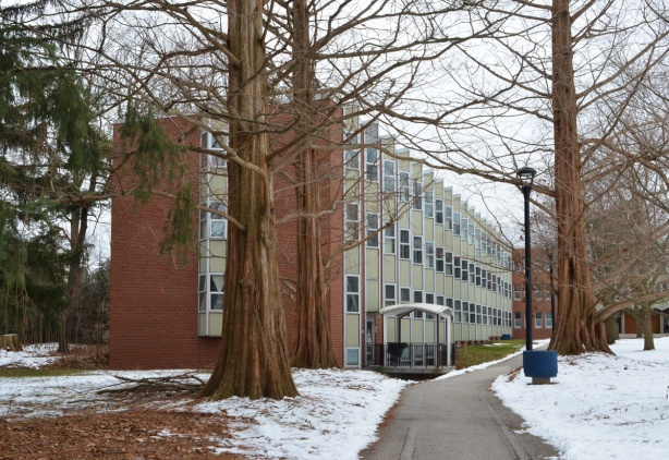 residence building, Glendon College, winter, path, large trees