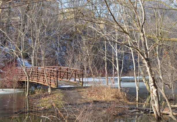 wooden bridge over creek, ground at end of bridge has been flooded, hill onthe other side of the bridge with aprtment buildings (low rise) on top