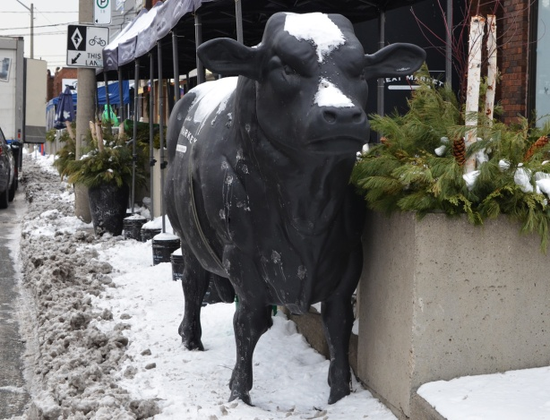 back cow sculpture, lifelike, beside the street, in front of a butcher shop in Mimico.