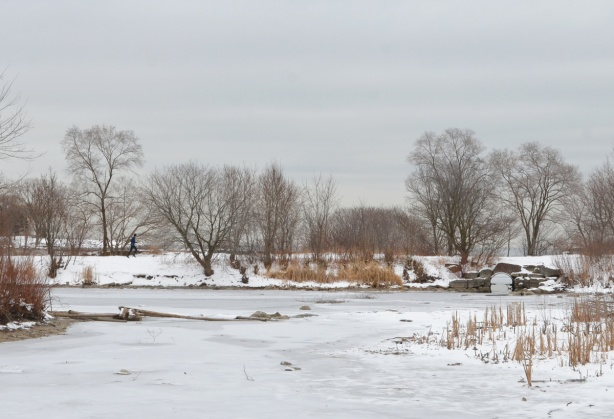 frozen pond with snow and bare trees