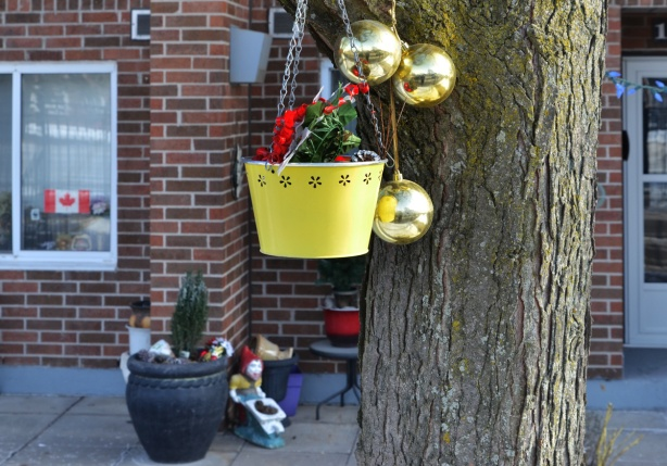 yellow metal bucket hanging from a tree with evergreens and a red ribbon, also three gold christmas balls hanging with the bucket