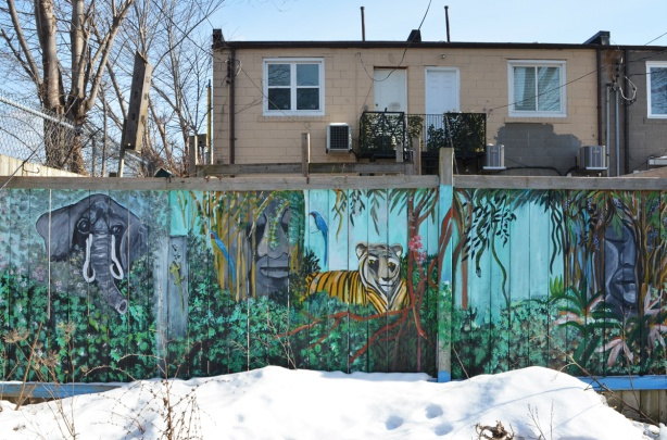 three panels on a wood fence in a laneway with murals on them, animal them, tiger in the center, also an elephant, snow in front of the fence, the back of houses behind