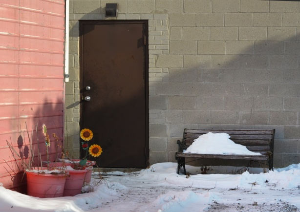 brown metal door on concrete block wall, pink planters with fake sunflowers in them, a bench with snow on it beside the door too