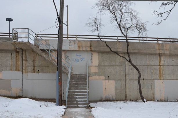 concrete retaining wall beside Royal York Rd, with stairs going up to road level, also a small tree
