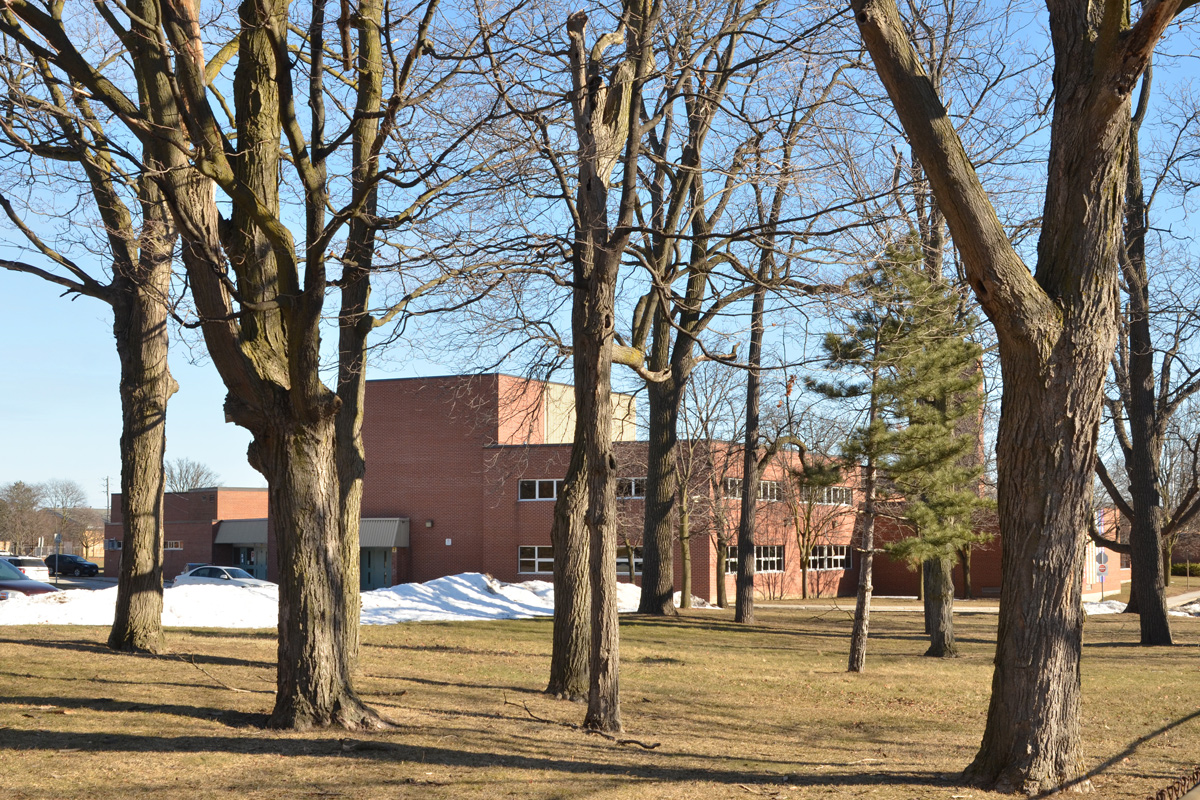 large trees in front of a red brick school, Agincourt Collegiate