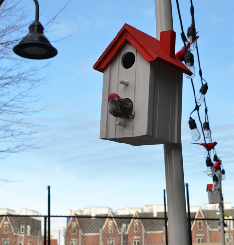 decorative birdhouse with red roof with a string of lights and a fake cardinal or two