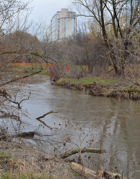 Don River in early spring