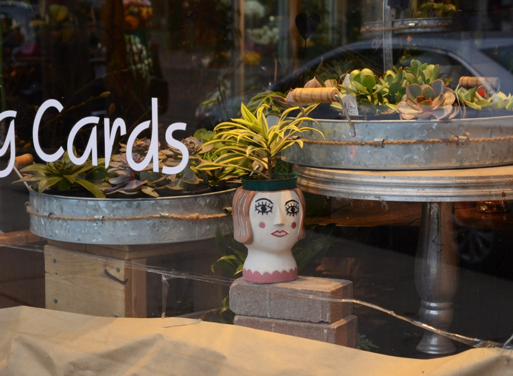 in a store window, florist, planter in the shape of a woman's head, also metal round trays of succulents