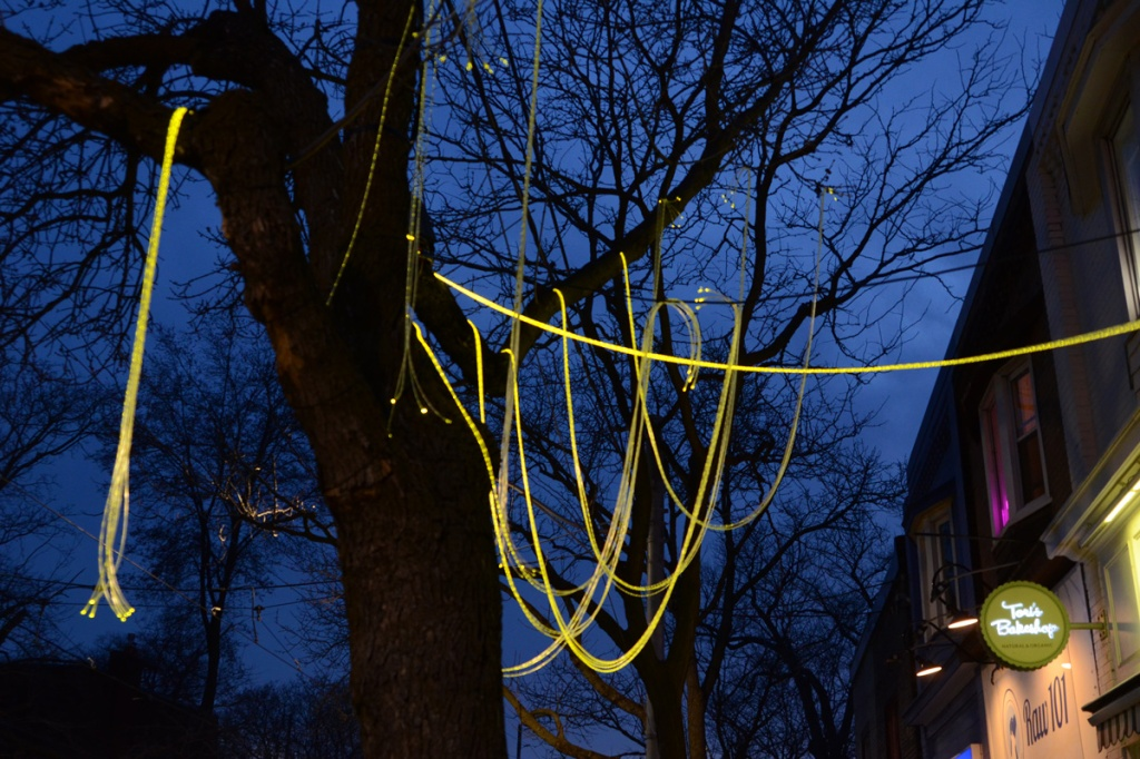 a string of yellow LED lights looped over branches of a large tree beside a row of stores, evening
