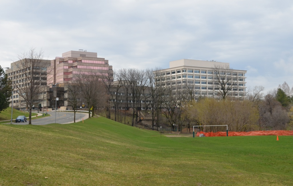 Green space, playing field, beside a road with office buildings on it