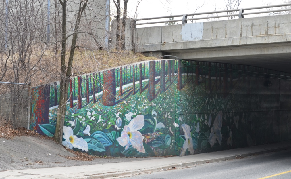end of a mural on walls of an underpass, under the DVP.  A field of white trilliums with tree trunks on the background.