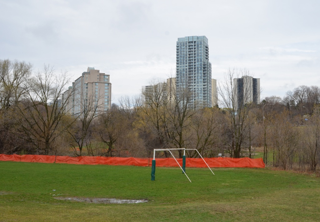 playing field with soccer goal, apartment buildings of Graydon Hall in the background.