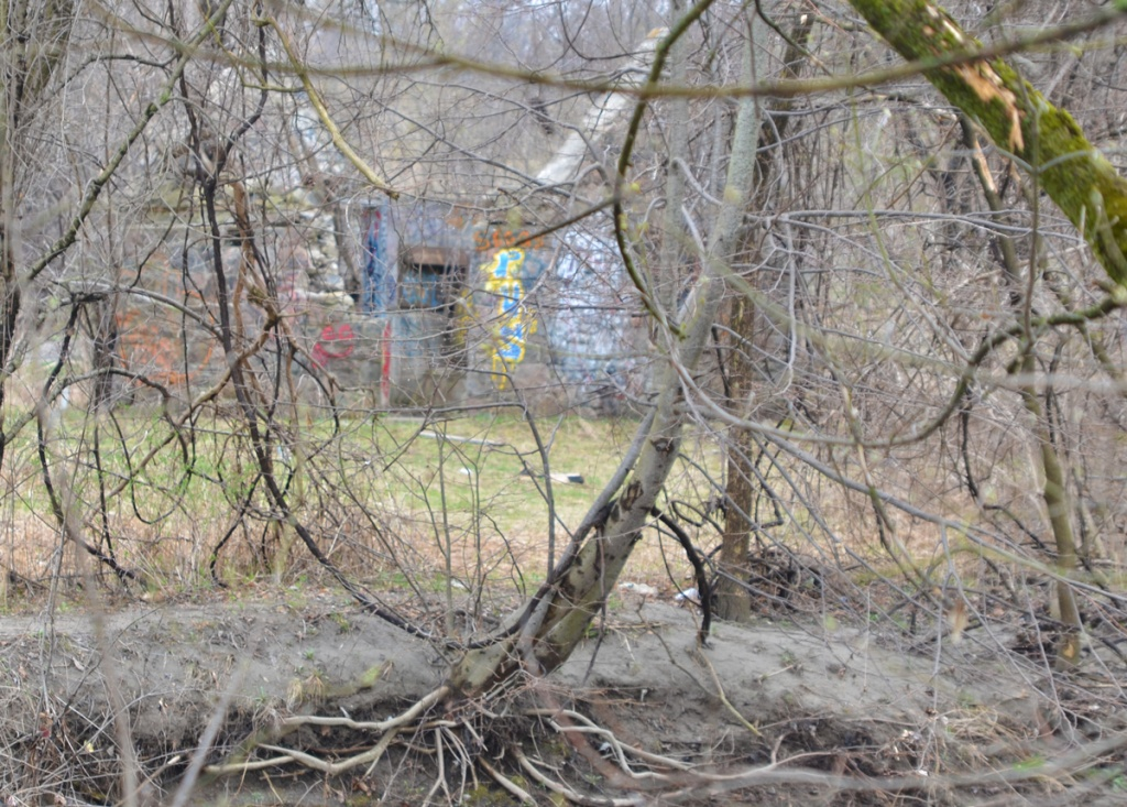 colorful graffiti on an old stone structure whose roof has collapsed, as seen from across a creek, with trees in the way, no leaves because April, too early in the spring