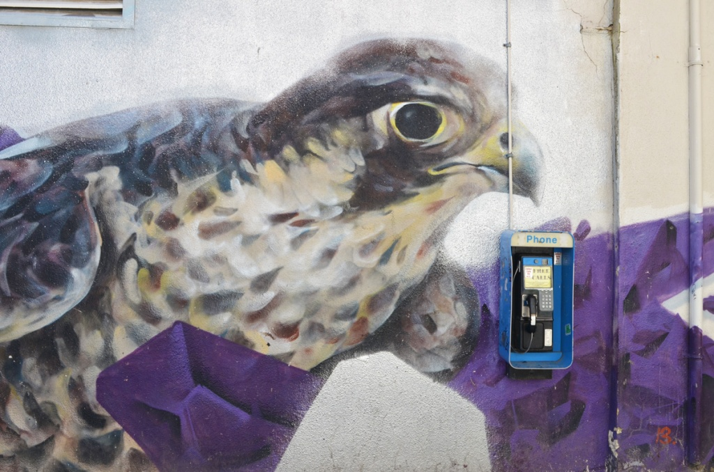 a small bell phone box mounted on a wall on top of a mural of a bird's head and upper body, purple and white background.  Very large bird with grey and yellow curved beak, black eye, spotted neck and chest