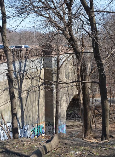 In early spring, no leaves on trees yet, large trees beside the Bloor street East bridge over Rosedale Valley Road