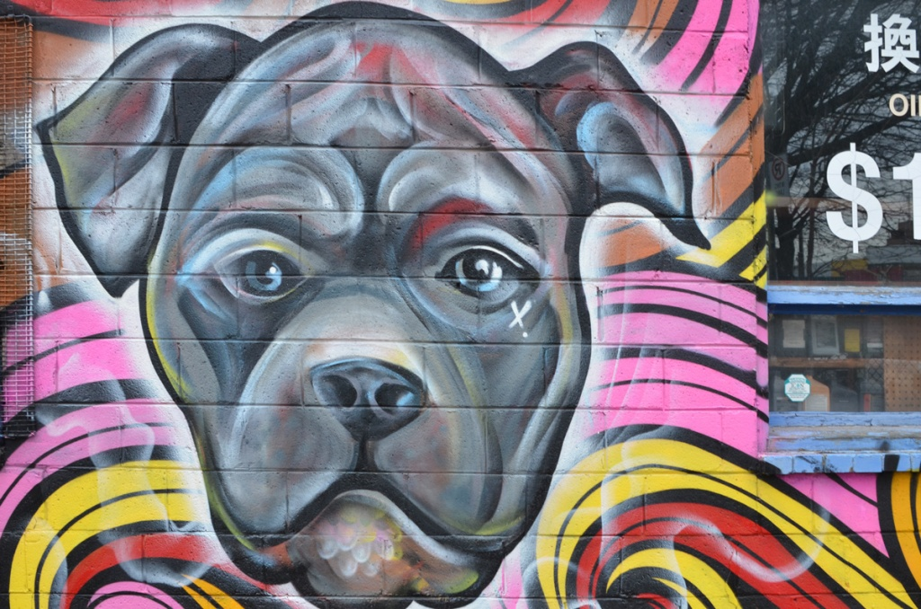 part of a mural, a grey dog's face