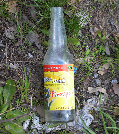 Empty glass drink bottle lying on ground, Sof Drink, carbonated beverage, pineapple flavour, Jamaican flavour