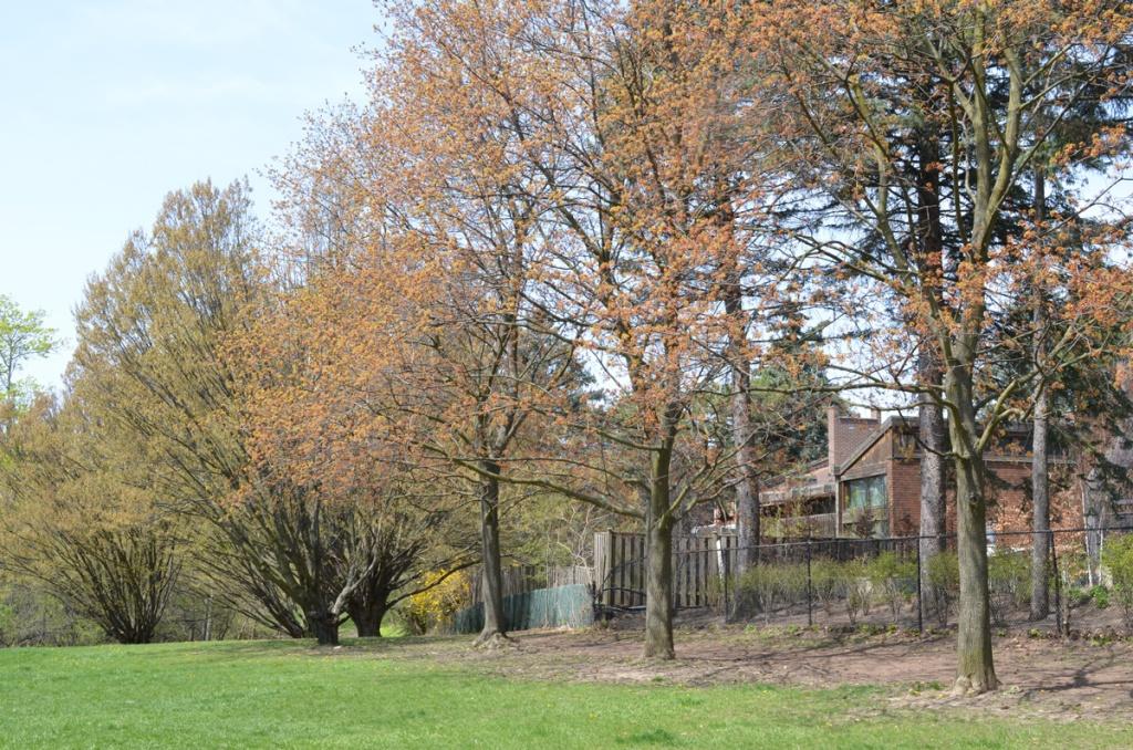 Windfields Park