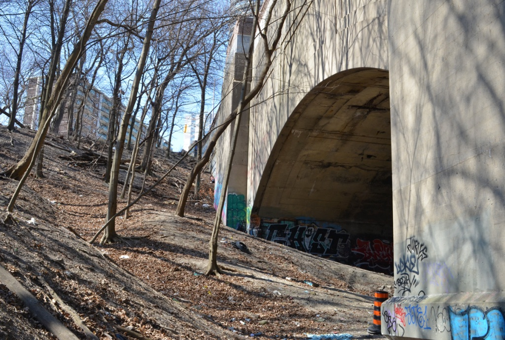 looking back up the hill beside a concrete bridge with graffiti on the bottom sections