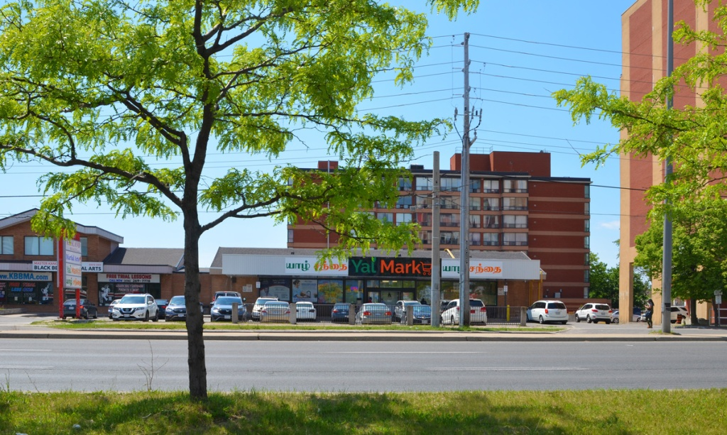 looking across the street, Eglinton Ave., at Yal market, an asian store, small tree on close side of the street, low rise apartment building behind the market