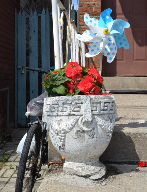 a grey concrete flower pot that is supposed to look like Roman urn, with bright red flowers growing in it plus a blue and white polka dot child's plastic windmill