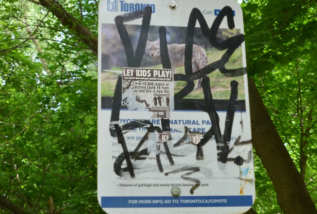 a city notice about being aware of coyotes in the park, a sticker that says Let kids play has been stuck on top.