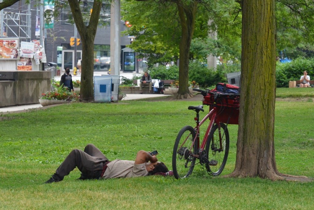 man lies on the grass, reading, his red bike leans against a tree beside him, activity on Queen Street in the background