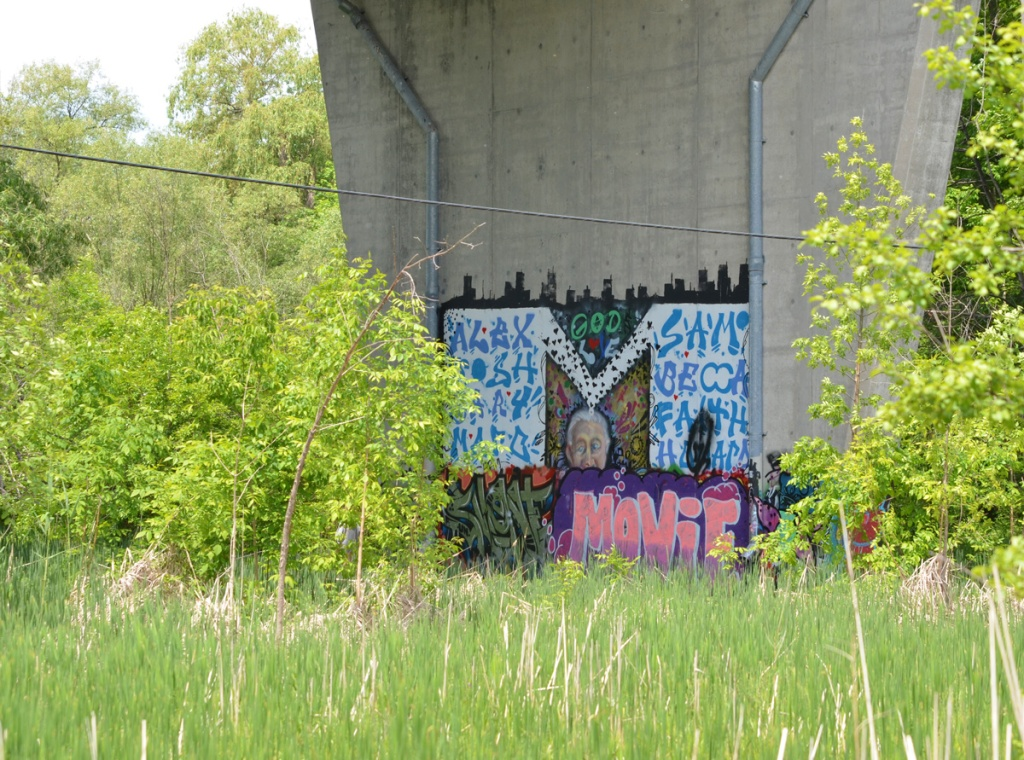 street art and graffiti on a concrete support of a bridge, old woman's head and face and lots of names - Alex, Sam, Becca, Faith, tall grass and shrubs growing around it