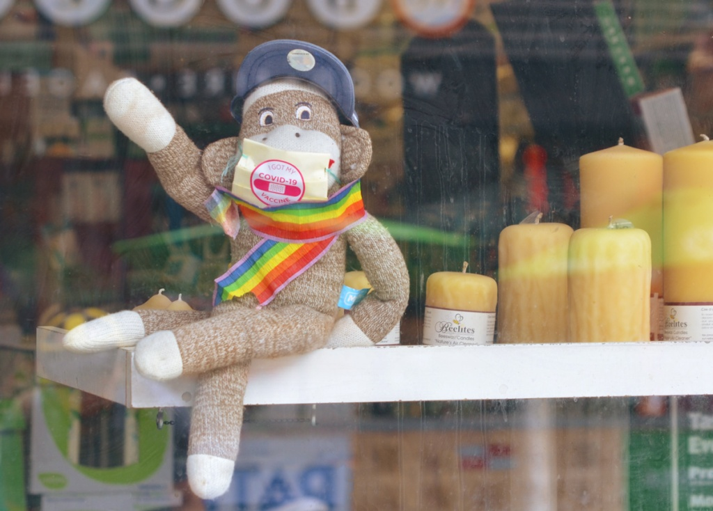a sock monkey sits in a store window, wearing a rainbow flag scarf and a sticker that says I got my covid-19 vaccine