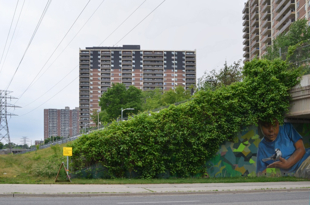 apartment buildings on Teesdale Place behind the above ground subway tracks as it approaches Pharmacy Ave where there is a Jarus mural on the walls of the underpass