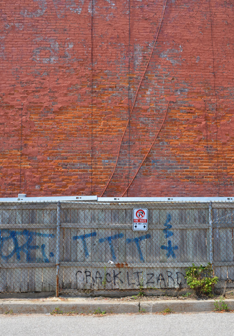 top of photo is red brick wall, bottom of image is a weathered wood fence with words crack lizard written on it