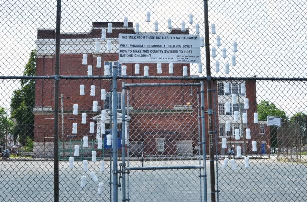 empty white milk bottles arranged on the fence beside Bloordale Collegiate