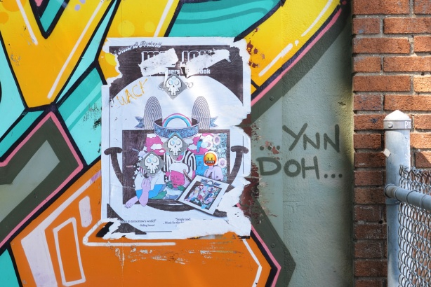 paste ups and paint on a wall, skulls, zonr,